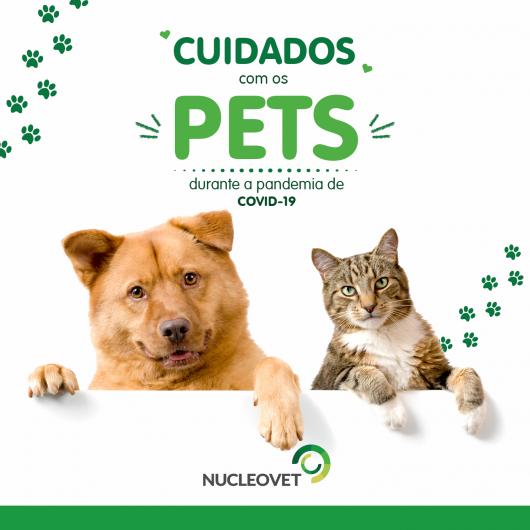 Médicos Veterinários alertam para os cuidados com os PETS durante a pandemia de COVID 19